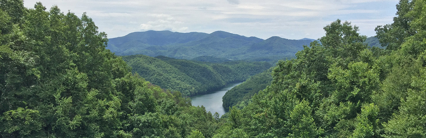 North Carolina Cabin Rentals in Bryson City, NC